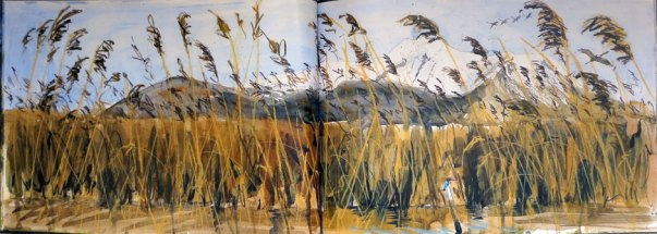 Paul Henery - Landscape