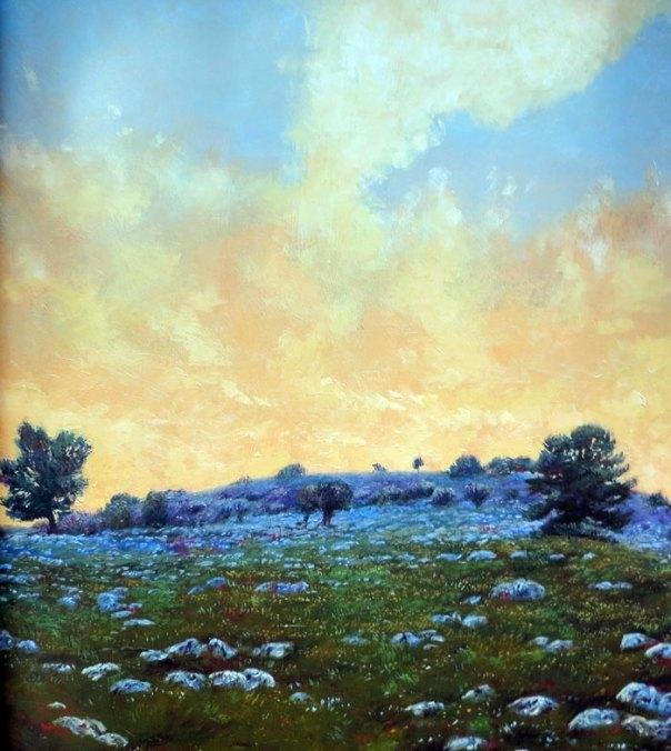 Robin Shillcock - Golan Sunset