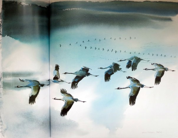 Wolfgang Weber - Cranes Flying
