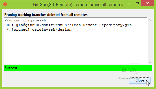 Git GUI แสดงผลการ Prune
