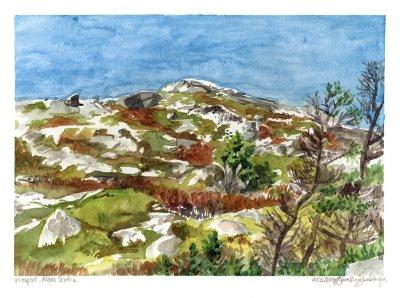 rock at prospect nova scotia watercolor painting