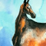 Arabian Horse Watercolor Horse Painting Painting By Natasha Ledeneva Artmajeur