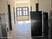 Camp de concentration Struthof