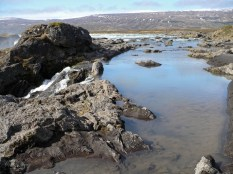 Dettifoss - Myvatn