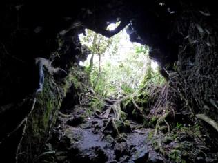 Rangitoto caves