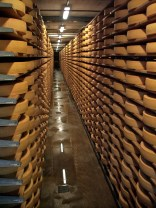 hummm... Assez de fromage pour moi!