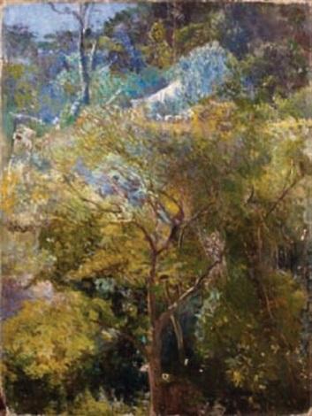 le jardin tropical von eliseu visconti auf artnet