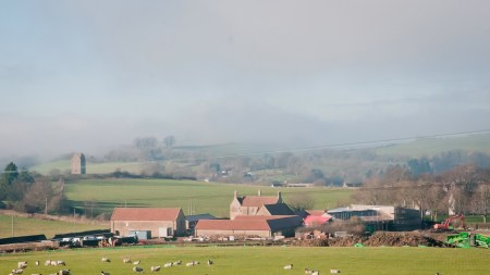 Hauser & Wirth Expands Rural Somerset,