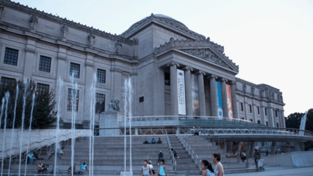 Brooklyn Museum Visitors Under 19 Will