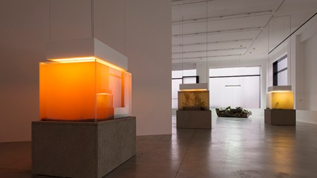 Pierre Huyghe Will Have Show on