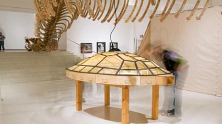Guggenheim Museum Pulls Works Involving Live