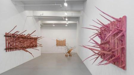 Lisson Gallery Adds Hugh Hayden Roster