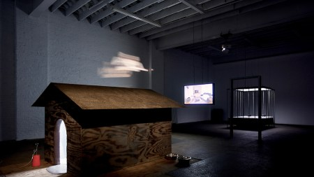 Signal Gallery, Hotbed Vanguard Art Brooklyn,