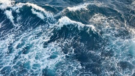 Critical Eye: Beyond the Sea