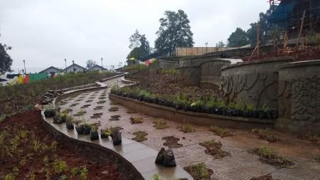 Artist Elias Sime Building Garden for