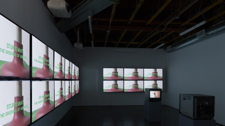 View of Sturtevant's video The Greening