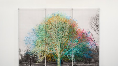 Charles Gaines, Numbers and Trees: Central Park,