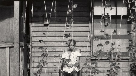 Dorothea Lange, Tennessee, 1938.
