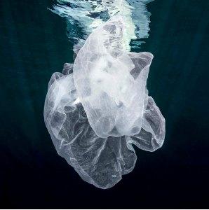 Fotografía de la serie Agua, autora Isabel Muñoz