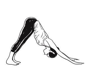 sun salutation yoga pose
