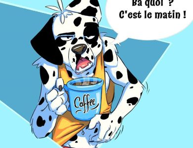 Dalmatien pas du matin