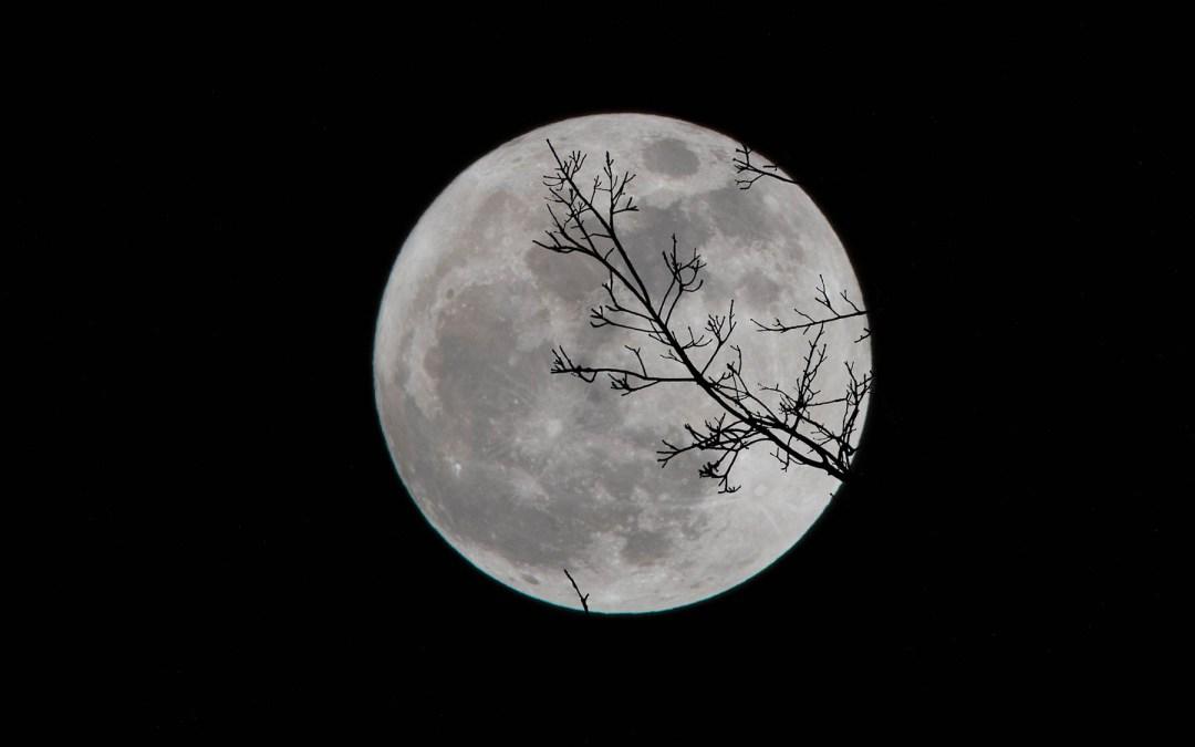Happy Full Moon Day!