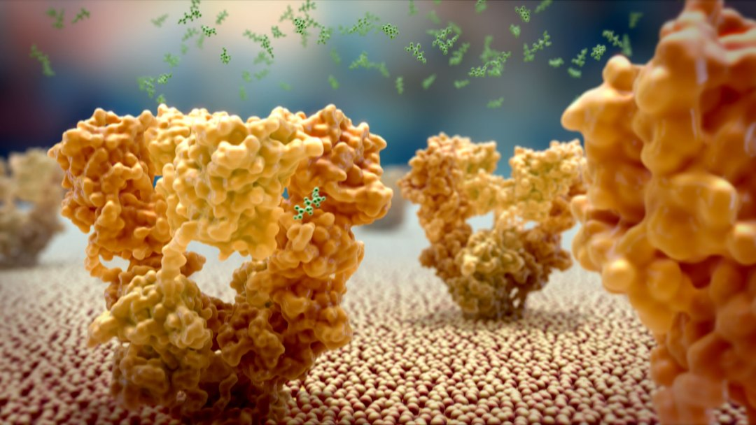 Art-of-the-Cell---Glutamate-Receptors