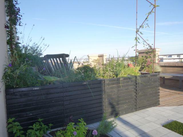 aménager une terrasse soleil