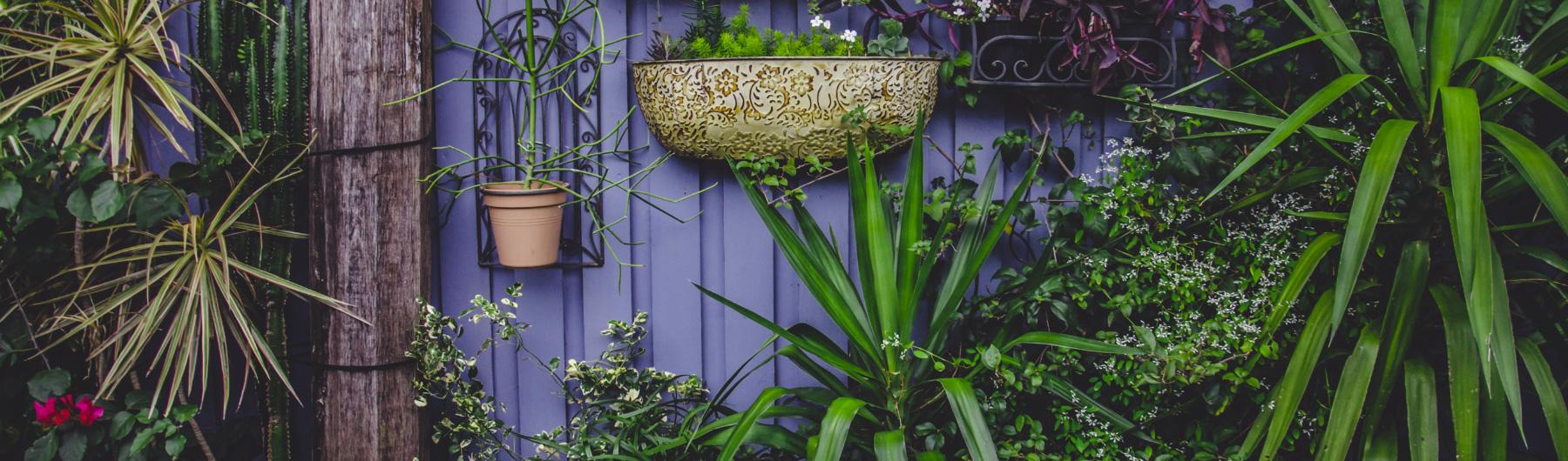 architecte paysagiste jardin coaching
