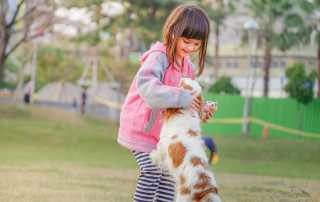 Helping a child though pet loss