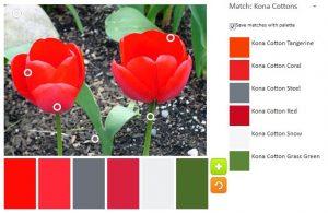 ColorPlay Feb 24 n.4