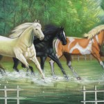 Beautiful Horse Paintings