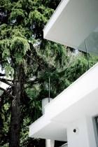 Garden - Tree - Riviera - Casa