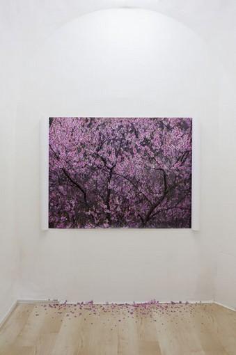 Sabrina Mezzaqui, Ciò che la primavera fa con i ciliegi, 2011, stampa a getto d'inchiostro su carta, ritagli