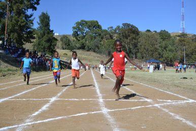 Primary School 60m