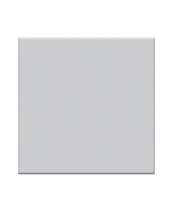 carrelage gris clair mat de couleur