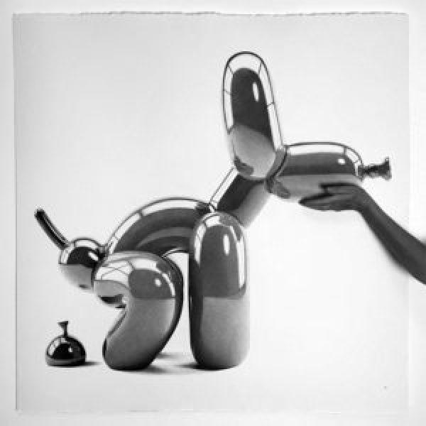 Poop-Balloon-Dog