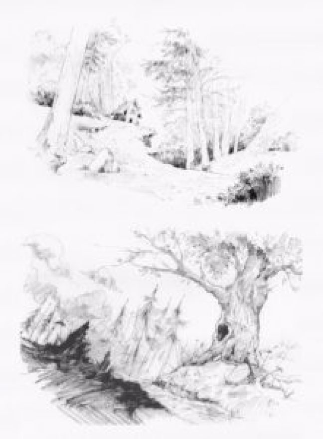 Landscapes in pencil05