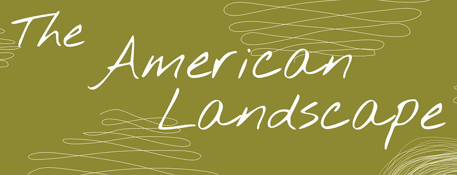 The American Landscape