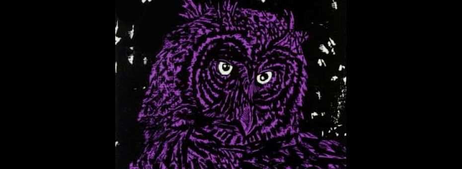 VISUAL | Nocturnal birds of prey, owls have figured in world cultures throughout history, from Greek mythology to Harry Potter