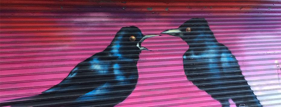 Hidden Audubon Murals