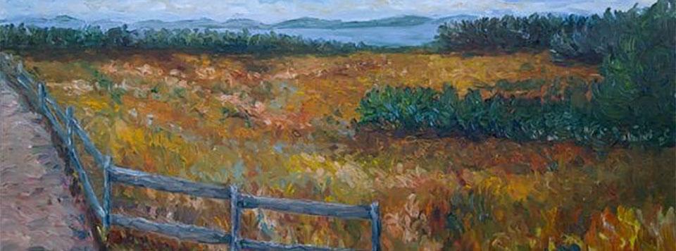 Tsawwassen Landscape