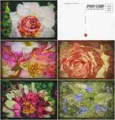 Floral art vintage postcard design, front and back