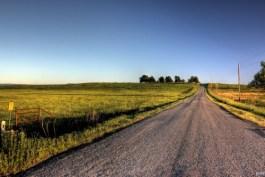 road-home-500x335.jpg