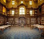 Thieves Have Systematically Looted A 16th Century Library