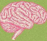 How Our Kids' Brains Are Being Rewired By Technology