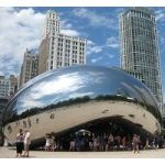 Sculptor Anish Kapoor Sues NRA For Copyright Infringement