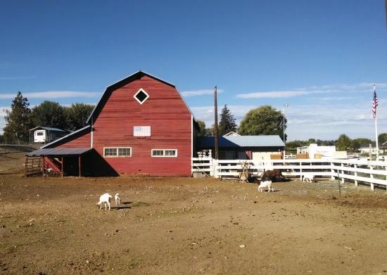 Barn & Goats, Selah Loop