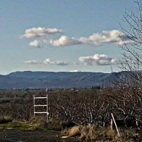 Other Matters: Snowless Winter (Sorry, Boston)