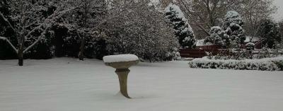 Birdbath in snow # 1